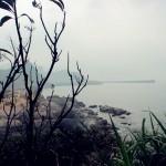 yeliugongyuan0056