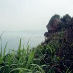 yeliugongyuan0075