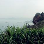 yeliugongyuan0077