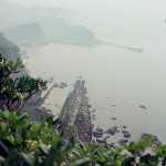 yeliugongyuan0089
