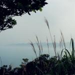 yeliugongyuan0095