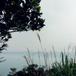 yeliugongyuan0096