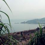 yeliugongyuan0113