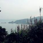 yeliugongyuan0120
