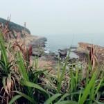 yeliugongyuan0122