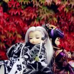 xiaowenhaoxiaowenqingyouaierlan121