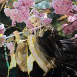 huiyezanhua066